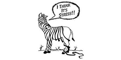 Top Tips for Coping with Stress